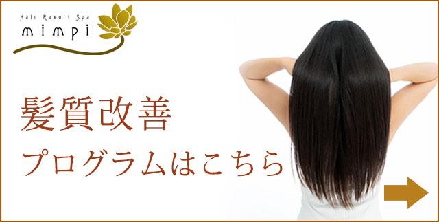 美艶・髪質改善